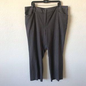 Lane Bryant gray trousers 22short